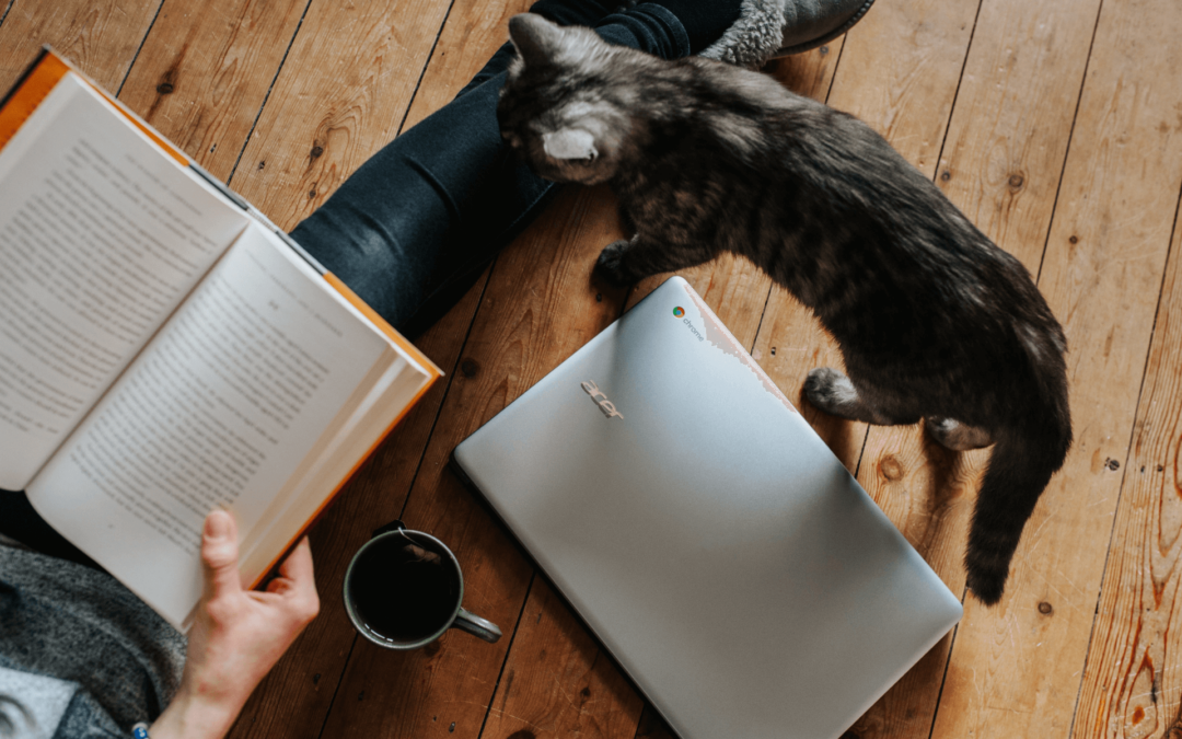 The Pupologie List: 2021 Trusted Pet Professionals